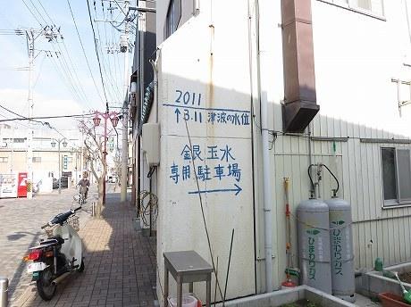IMG_6562-3.jpg